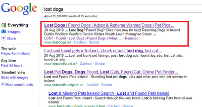 Example of SEO work on www.lostdogs.ie website giving top result on Google Organic Listings for the search term lost dogs